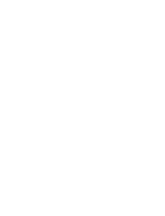 Young Democrats of North Carolina logo; the letters YDNC written out with a graphic of a cardinal perched on top of the D